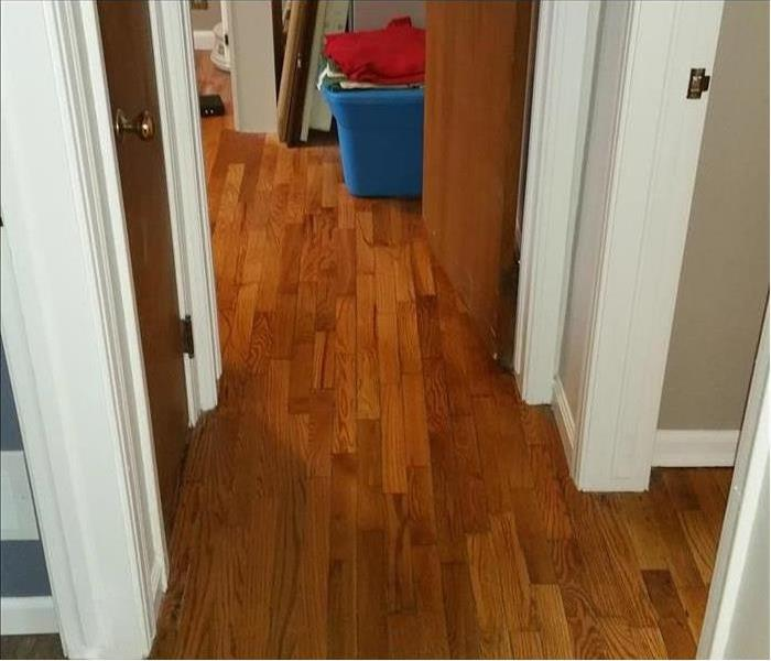 Water Damaged to Hardwood floor after