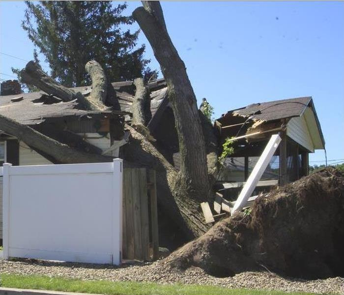 Wind Damage in South Bend, IN