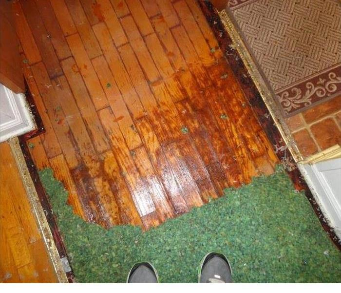 Water Damaged to Hardwood floor before
