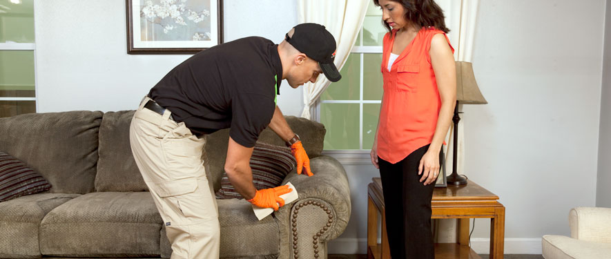 South Bend, IN carpet upholstery cleaning